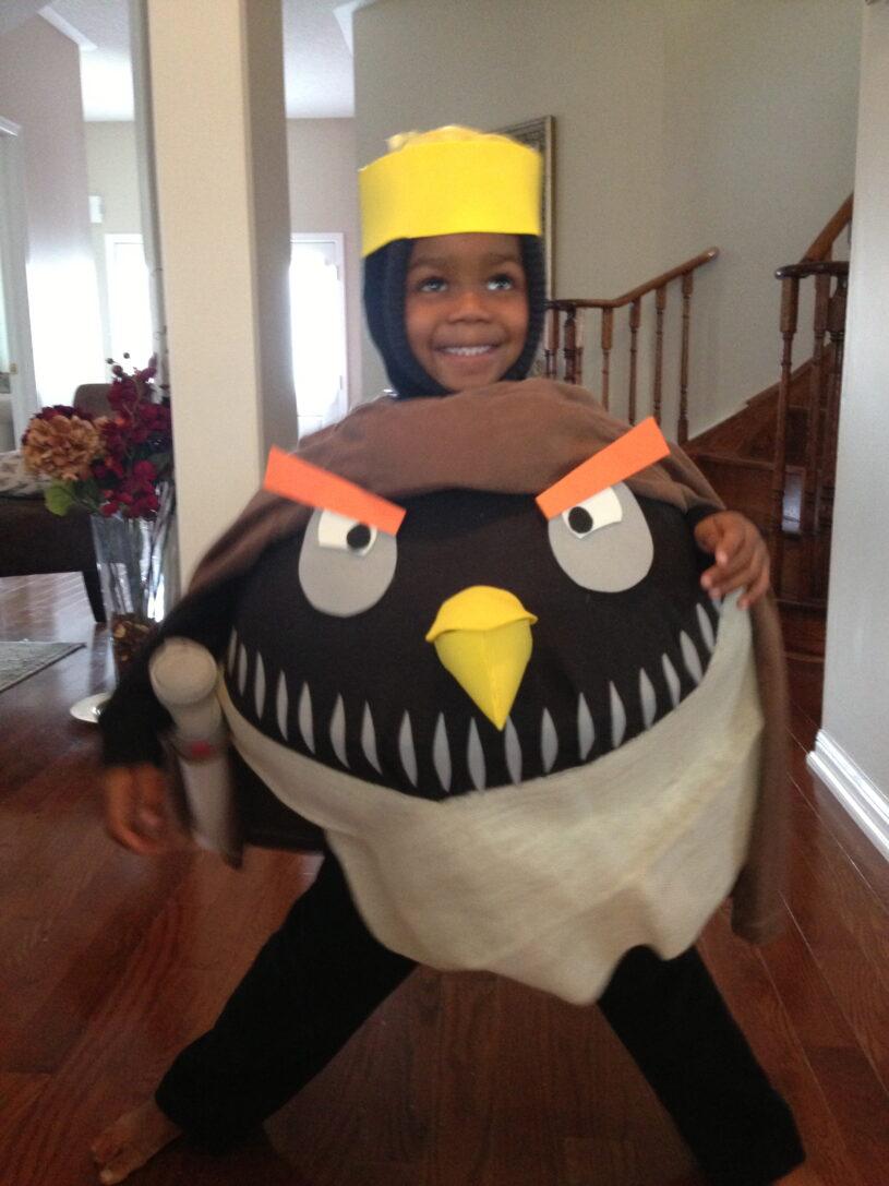 Kash's DIY Angry Birds Costume